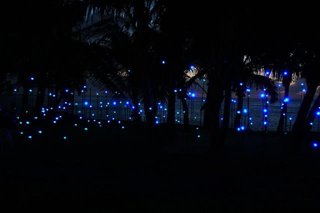 The Art of Beautiful : Des oeuvres lumineuses éclairent les jardins du Dinarobin Beachcomber Golf Resort & Spa